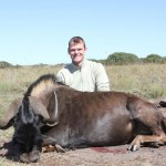 Black Wildebeest Jeremy 20121129