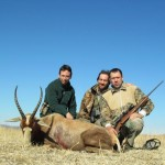 Blesbok group 20120910