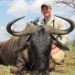 Blue Wildebeest horns 20120413