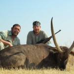 Waterbuck behind 20120823