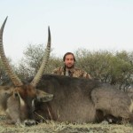 Waterbuck shot 20120908